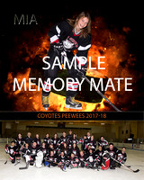 memory mate sample
