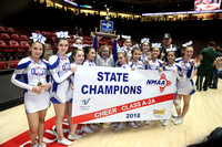 Questa Cheerleaders at State Competition March 22-23, 2018
