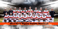 Taos Tigers Baseball Teams
